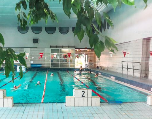 Piscine cour des lions for Piscine paris 11