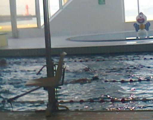 Piscine municipale nausica for Boulogne billancourt piscine municipale