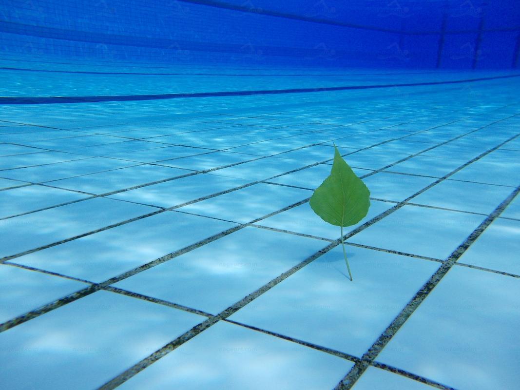 Annuaire des piscines suisse piscines for Piscine villejuif