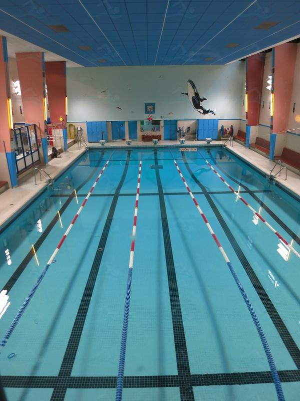 photos piscine paul valeyre