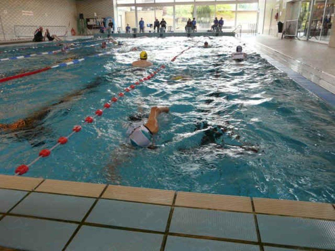 Annuaire des piscines belgique piscines for Piscine stade louis 2