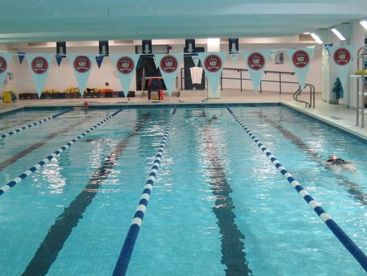 piscine du cegep du vieux montr al