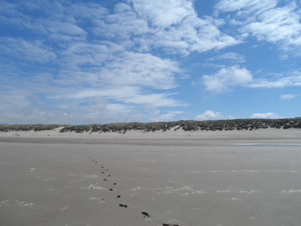 Rencontre plage Site de rencontre gratuit portugais