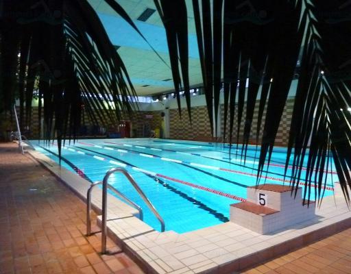 piscine porte de la plaine nageurs
