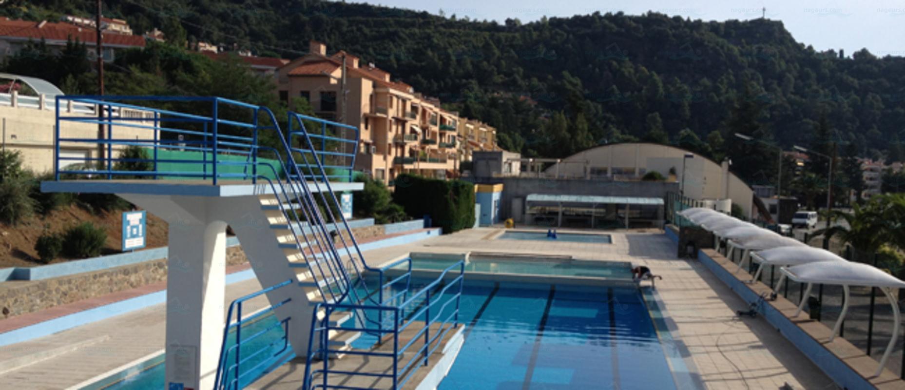 Piscines france languedoc roussillon les piscines - Office du tourisme amelie les bains 66 ...