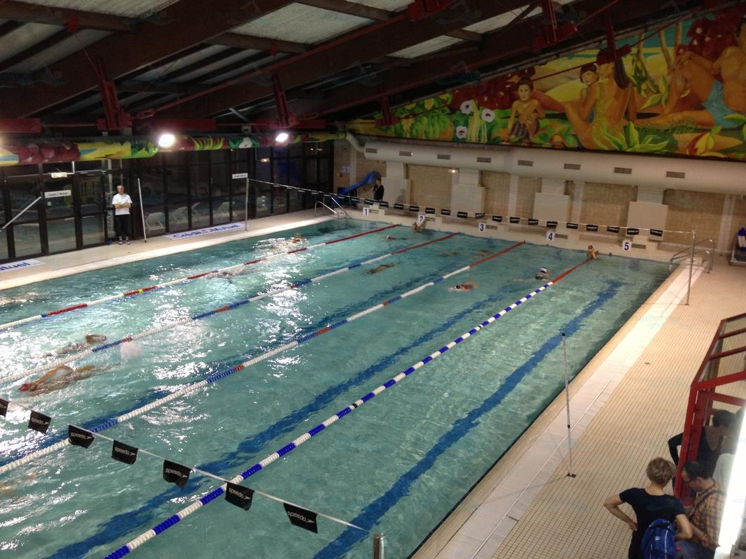 Piscines france ile de france les piscines paris 75 for Piscine jean taris