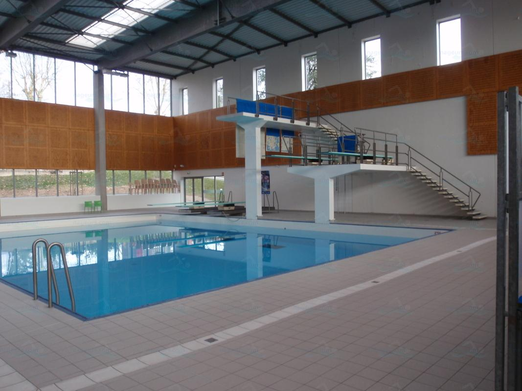 Piscines france rh ne alpes les piscines ain 01 for Piscine plongeoir