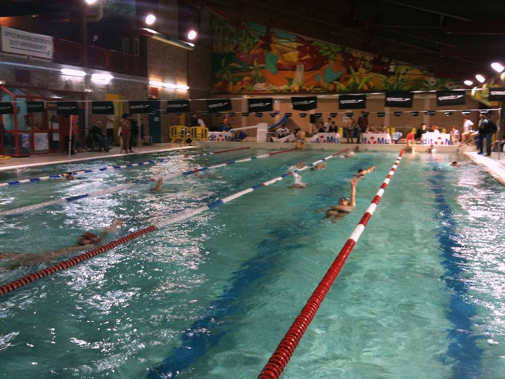 Les 12 heures de natation 2013 piscine bernard lafay photos - Piscine municipale bernard lafay ...