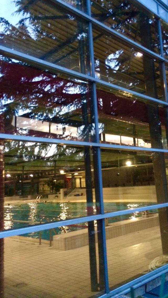 Fiche de nageurfelin for Chevilly larue piscine